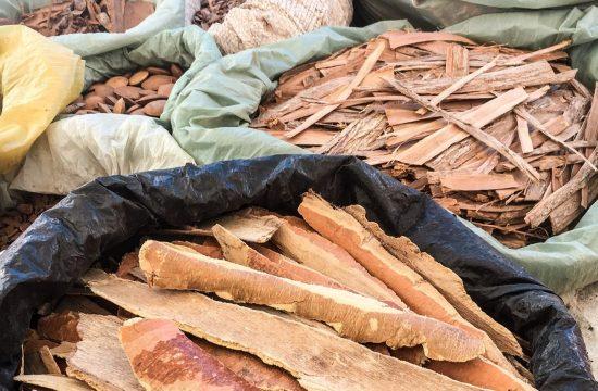 Cascas de madeiras nativas da Caatinga vendidas na banca do Seu Paulo. Fotos: Gabrielle Ferreira / Repórter Gourmet.