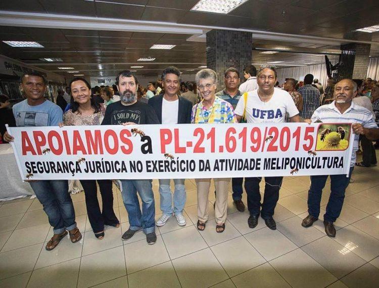 É aprovada lei a favor das abelhas nativas na Bahia